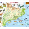 Mapa fisico de Catalunya