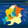 mapa politico de yaracuy